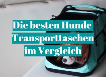 Die besten Hunde Transporttaschen im Vergleich